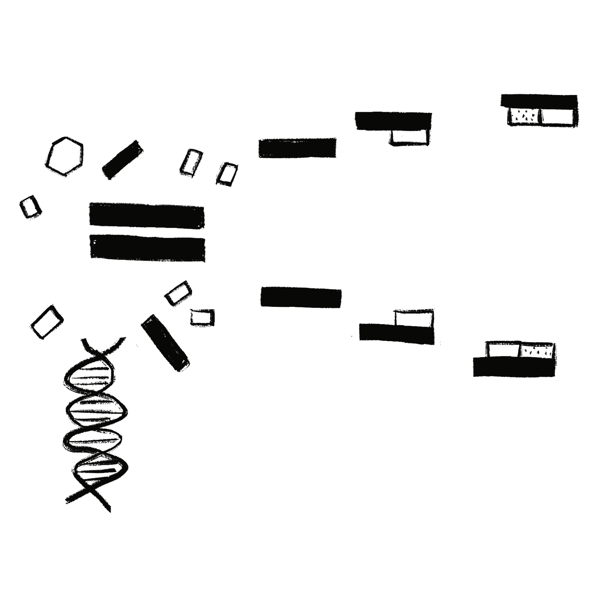 DNA Polymerase: What Is It and What Does It Do?